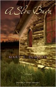 A Slow Burn by Mary DeMuth