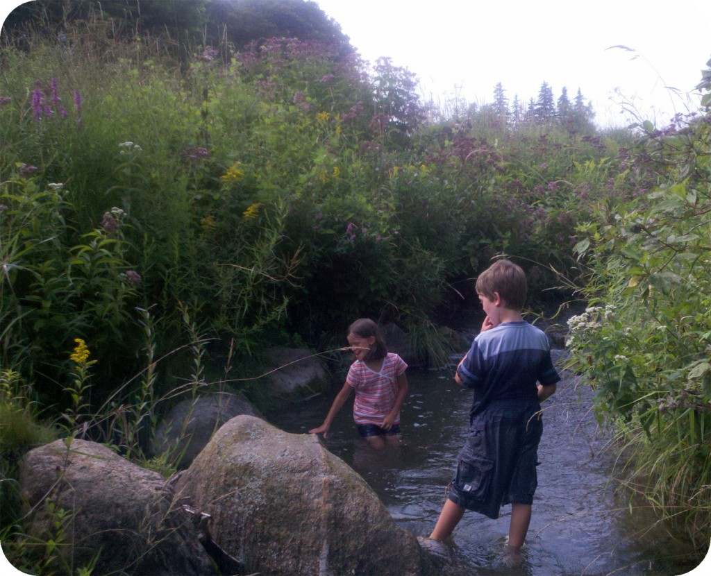 Exploring the Creek