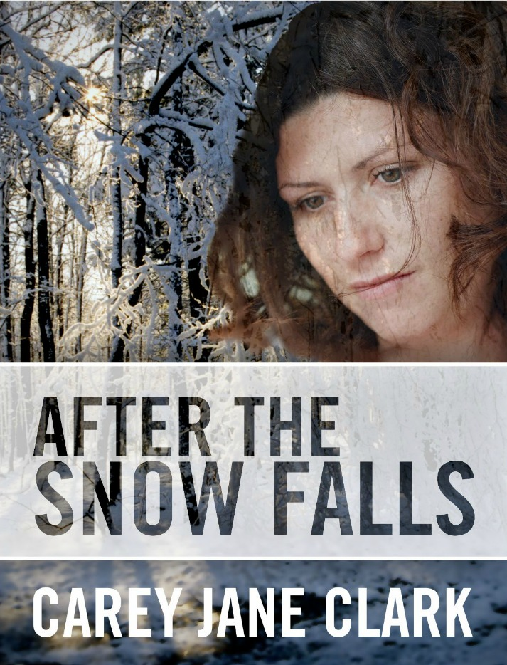 After the Snow Falls cover