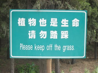 keep-off-grass