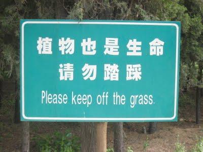 keep-off-grass